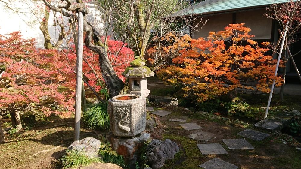 成巽閣の庭園の紅葉