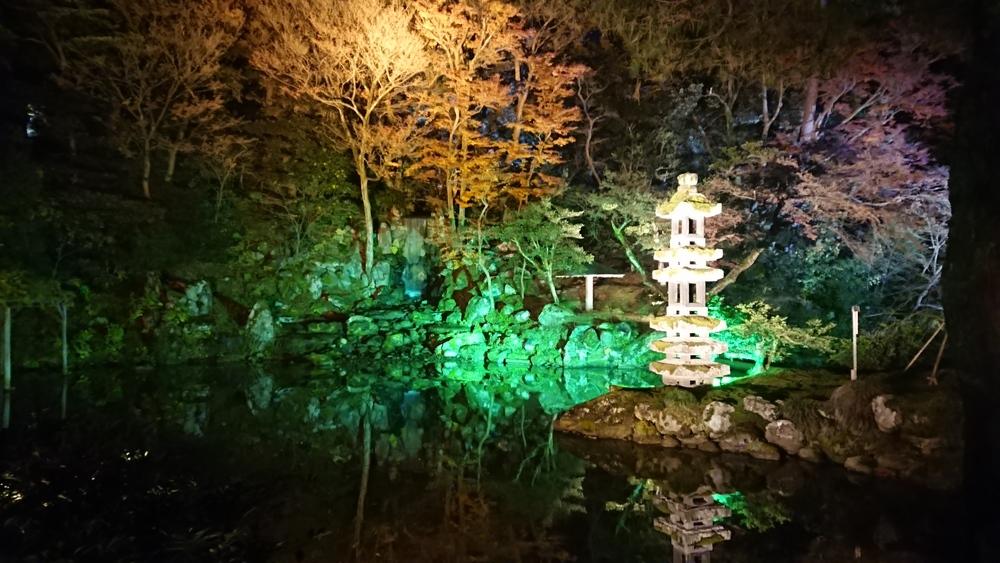 海石塔と翠滝の紅葉ライトアップ